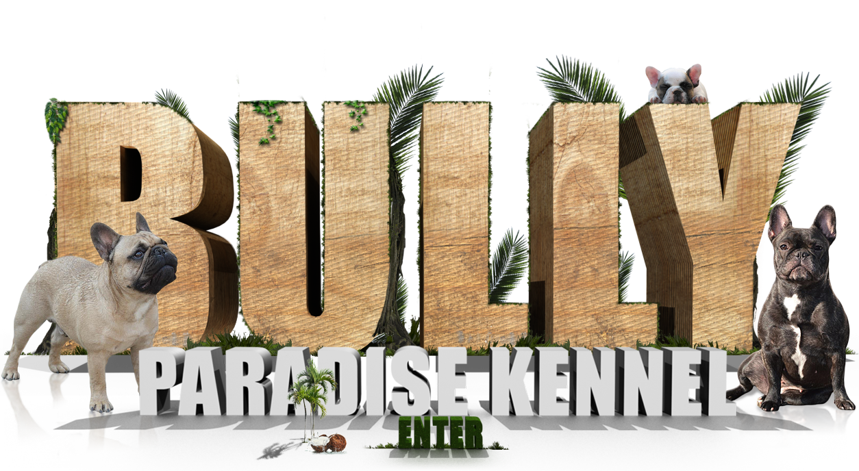 Bully Paradise Kennel - Klick to Enter